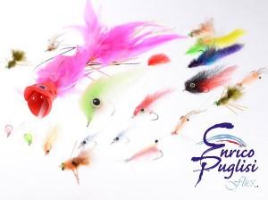 enrico_fly3